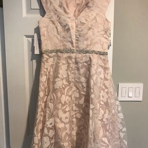 0398d122e9cab David's Bridal Dresses | Ivory And Blush Floral Fit And Flare Dress ...